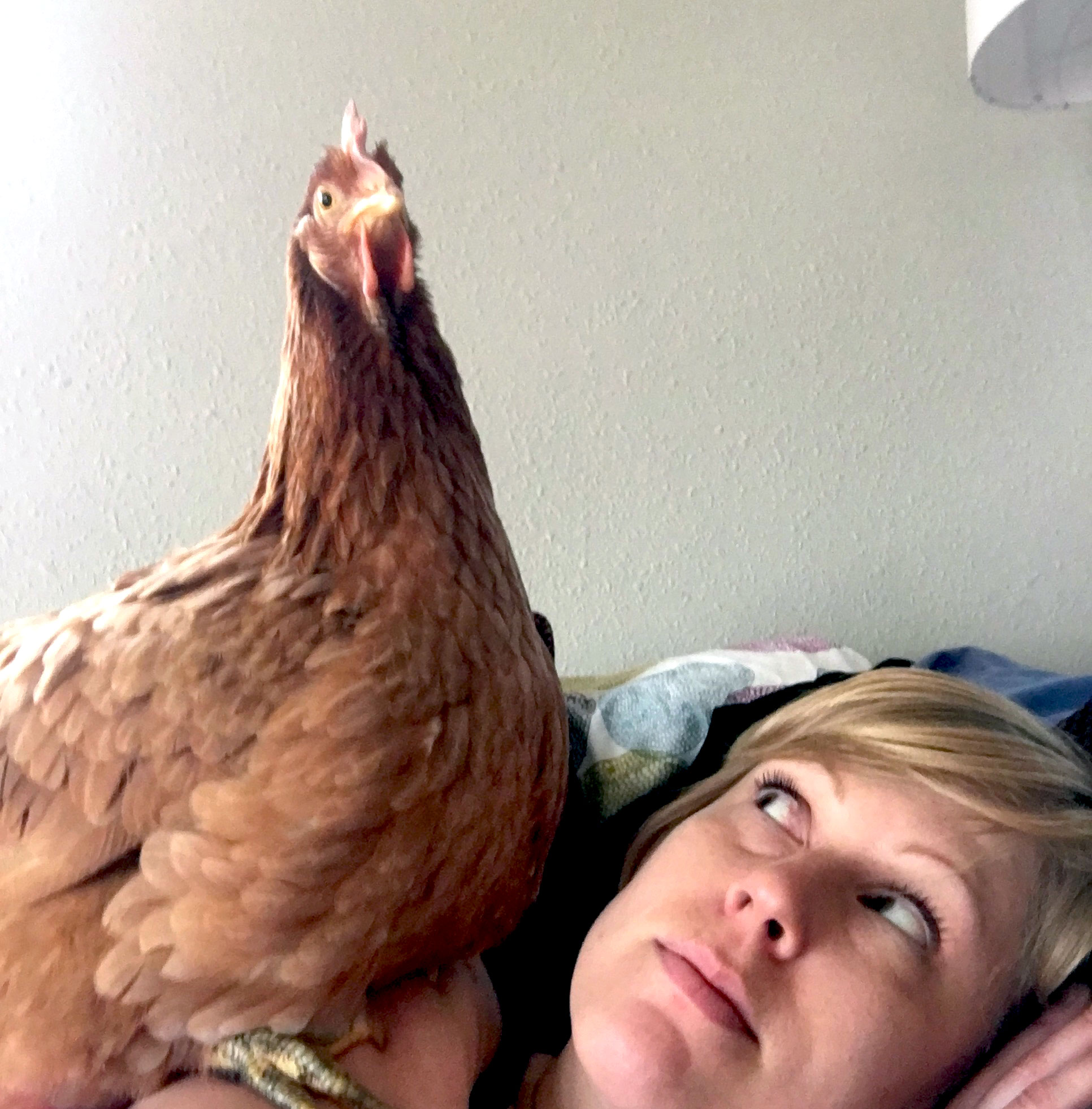 Woman and hen ou a couch