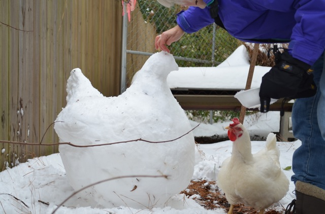 Carol puts the final touches on the snow hen