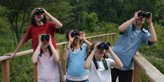 Family birdwatching with binoculars