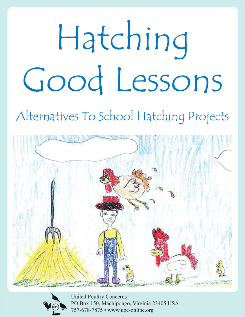 Book cover for Hatching Good Lessons