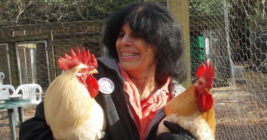Karen Davis holding roosters Nicholas and Nathaniel