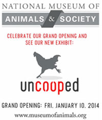 uncooped Grand Opening