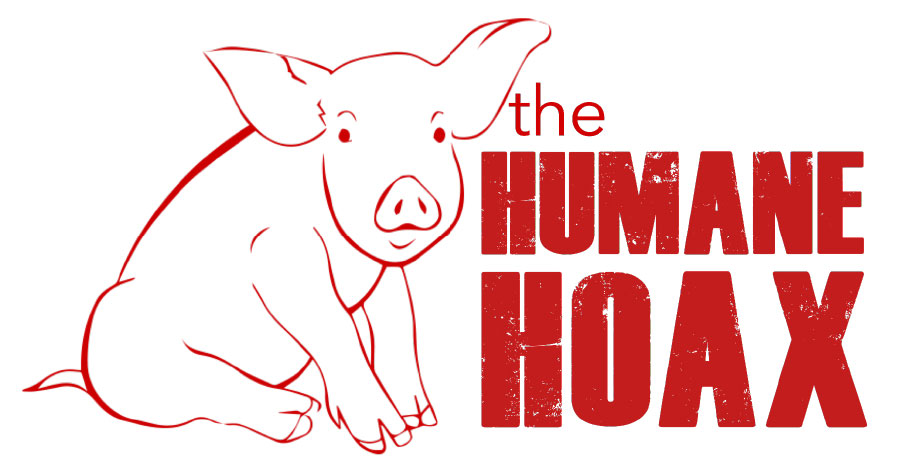 Humane Hoax logo: an outline drawing of a sitting pig