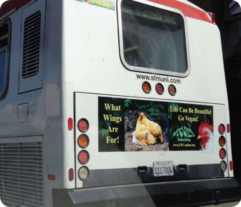 sf go vegan bus ad2
