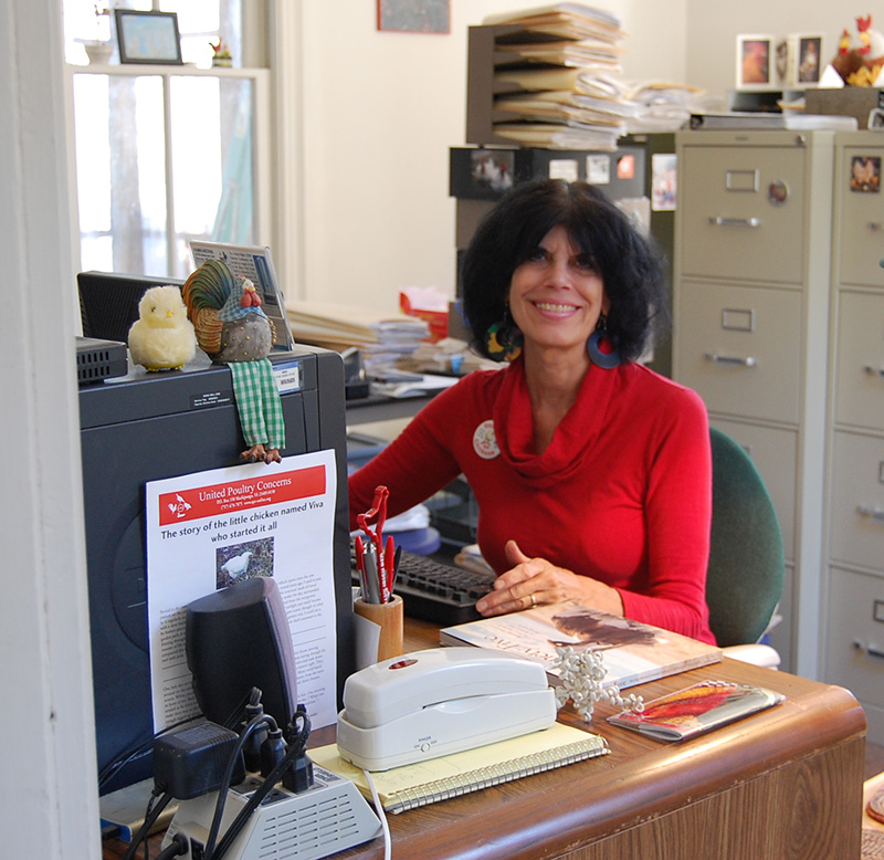 karen desk crop