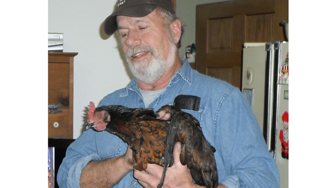 cluck cluck saves couple from fire